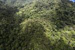 Rainforest in Borneo -- sabah_aerial_0479