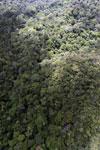 Rainforest in Borneo -- sabah_aerial_0480