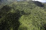 Rainforest in Borneo -- sabah_aerial_0482
