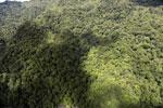 Rainforest in Borneo -- sabah_aerial_0483