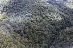 Rainforest in Borneo -- sabah_aerial_0484