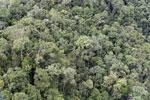 Rainforest in Borneo -- sabah_aerial_0487