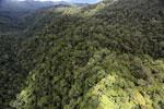 Rainforest in Borneo -- sabah_aerial_0490