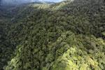 Rainforest in Borneo -- sabah_aerial_0491