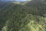 Rainforest in Borneo -- sabah_aerial_0492