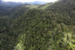Rainforest in Borneo -- sabah_aerial_0494