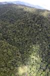 Rainforest in Borneo -- sabah_aerial_0496