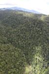 Rainforest in Borneo -- sabah_aerial_0497