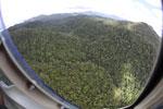 Rainforest in Borneo -- sabah_aerial_0499