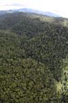 Rainforest in Borneo -- sabah_aerial_0500