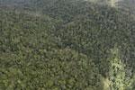 Rainforest in Borneo -- sabah_aerial_0501