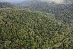 Rainforest in Borneo -- sabah_aerial_0504