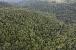 Rainforest in Borneo -- sabah_aerial_0505