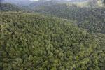 Rainforest in Borneo -- sabah_aerial_0507