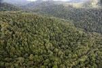 Rainforest in Borneo -- sabah_aerial_0508