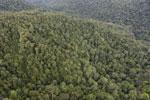 Rainforest in Borneo -- sabah_aerial_0509