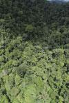 Rainforest in Borneo -- sabah_aerial_0520