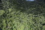 Rainforest in Borneo -- sabah_aerial_0521