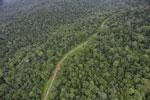 Logging road in Borneo -- sabah_aerial_0525
