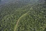 Logging road in Borneo -- sabah_aerial_0527