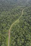 Logging road in Borneo -- sabah_aerial_0529