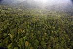 Rainforest in Borneo -- sabah_aerial_0535