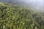 Rainforest in Borneo -- sabah_aerial_0543
