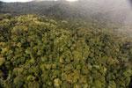 Rainforest in Borneo -- sabah_aerial_0547