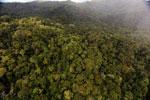 Rainforest in Borneo -- sabah_aerial_0548