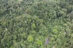 Rainforest in Borneo -- sabah_aerial_0555