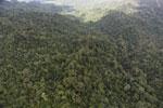 Rainforest in Borneo -- sabah_aerial_0561
