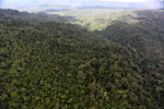 Rainforest in Borneo -- sabah_aerial_0562