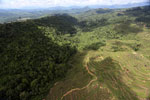 Deforestation for palm oil in Borneo -- sabah_aerial_0573