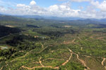 Oil palm plantations in Borneo -- sabah_aerial_0582