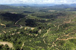 Oil palm plantations in Borneo -- sabah_aerial_0584