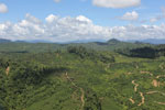 Oil palm plantation in Borneo -- sabah_aerial_0602