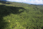 Degraded forest in Borneo -- sabah_aerial_0607