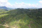 Forest and oil palm plantations in Borneo -- sabah_aerial_0614