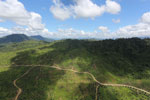 Forest and oil palm plantations in Borneo -- sabah_aerial_0615
