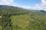Forest and oil palm plantations in Borneo -- sabah_aerial_0623