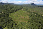 Forest and oil palm plantations in Borneo -- sabah_aerial_0624