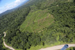 Forest and oil palm plantations in Borneo -- sabah_aerial_0625