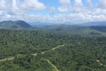 Heavily logged forest in Borneo -- sabah_aerial_0627