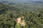 Heavily logged forest in Borneo -- sabah_aerial_0632