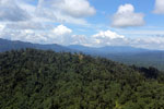 Heavily logged forest in Borneo -- sabah_aerial_0636