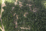 Heavily logged forest in Borneo -- sabah_aerial_0641