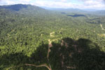 Heavily logged forest in Borneo -- sabah_aerial_0642