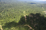Heavily logged forest in Borneo -- sabah_aerial_0643