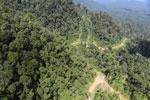 Logging road in Borneo -- sabah_aerial_0644