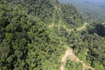 Logging road in Borneo -- sabah_aerial_0645